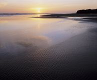 Tidal flats and ocean at sunset Royalty Free Stock Photography