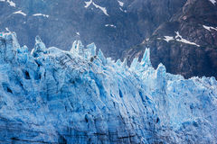 Tidal glacier face in Glacier Bay National Park. Royalty Free Stock Photo