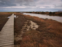 Tidal lagoons nature reserve Stock Images