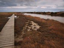 Tidal lagoons nature reserve. Near Blenheim New Zealand Stock Images