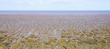 Tidal Mudflats royalty free stock photography