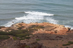 Tidal Pools - Cabrillo National Monument royalty free stock photos