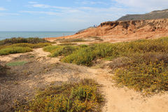 Tidal Pools - Cabrillo National Monument stock photos