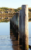 Tidal Posts. Mark the rise and fall of the tide between sea water and fresh water at Waikanae Estuary, Wellington, New Zealand stock images