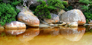 Tidal river Royalty Free Stock Photos