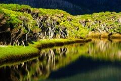 Tidal River wilsonsstudentbal Arkivbild