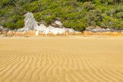 Seashore Landscape Background Stock Photography