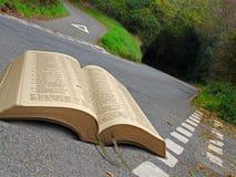 Tiddymotts öppen bibel Arkivbild