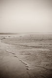 The tide along the beach Royalty Free Stock Image