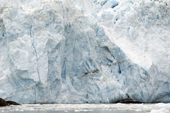 Tide Glacier in Alaska Royalty Free Stock Photo