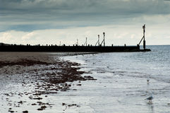 Tide-line and groynes Royalty Free Stock Photography