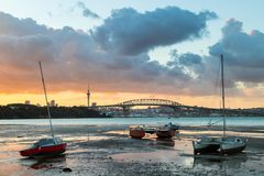 Tide Out At Auckland. Auckland Harbour at low tidy with a sunrise sky Royalty Free Stock Photography
