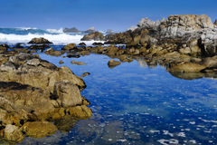 Tide Pool Royalty Free Stock Images