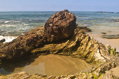 Tide Pool. Pacific Tide Pool on the Orange County Coast royalty free stock photography