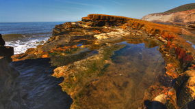 Tide Pools Stock Images