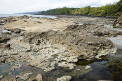 Tide pools on beach Stock Photography