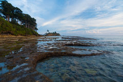 Tide Pools Coast Neil Island Andaman Landscape Royalty Free Stock Image
