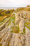 Tide Pools and Jagged Rocks on the Coast Royalty Free Stock Images