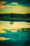 Tide scenery. Water tide landscape scenery of fields at sunset royalty free stock photo