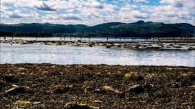 The Tide. Time lapse video of the High to low tide water in Norway, Stjørdal stock footage