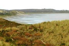 tideland залива Стоковое фото RF
