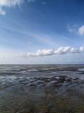 Tideland di marea bassa Immagini Stock Libere da Diritti