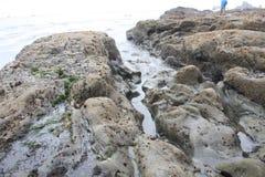 Tidepool和光滑的岩石 免版税库存照片