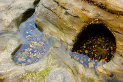 Tidepool with pebbles in holes in a rock stock image