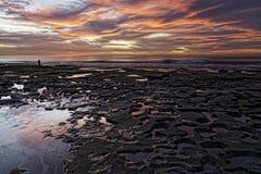Tidepools на рифе La Jolla больниц Стоковое Фото