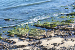 Tidepools along beach Royalty Free Stock Photography