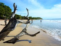 Tides of Costa Rica. Beautiful scenery on a warm sunny day at a beach in Costa Rica Royalty Free Stock Photos