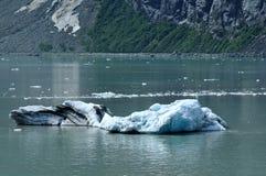 tidewater för margerie för alaska glaciärisberg Royaltyfri Foto