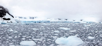 Tidewater glacier, Paradise Bay, Antarctica Royalty Free Stock Photos