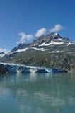 Tidewater Lambplugh Glacier, Alaska Royalty Free Stock Image