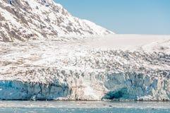 Tidewater lodowiec Fotografia Stock
