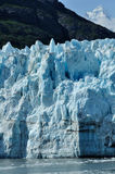 Tidewater Margerie Glacier, Alaska Royalty Free Stock Photo