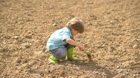tidig barndomutveckling Gullig liten bonde som arbetar med potatis p? v?rf?lt - barnbonde som planterar i lantg?rden arkivfilmer