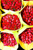 tidig erbjudna ro för blommamarknad morgon Fotografering för Bildbyråer