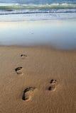 tidig fotspårmorgon Arkivfoton