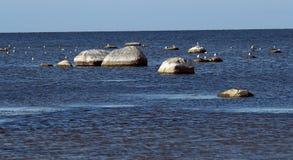 Tidig höst på den Riga Gulf Coast Royaltyfri Fotografi