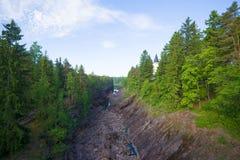 Tidig Juni morgon över den Imatrankoskis kanjonen stenig vuoksi för forntida för gruppfinland skog flod för imatra royaltyfri foto