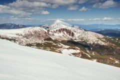 tidig liggandebergfjäder snöig berg Arkivfoton
