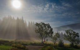 tidig liggandemorgon Arkivfoto