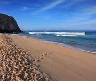 Tidig sol på den sandiga stranden Arkivbild