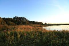 tidig sommar för lakemorgonkust Arkivfoton