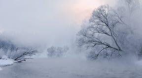 Tidig sortsoluppgång över trees som täckas med hoar nära en flod Royaltyfria Bilder