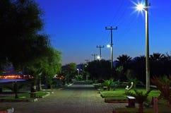 tidig trädgårds- morgonpromenad Arkivfoton