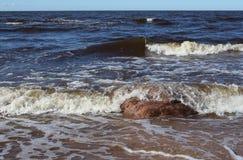 Tidig vår på den Riga Gulf Coast Arkivfoto