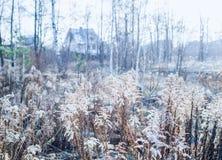 Tidig vinter och första frostiga dag i en bygd av centralen Ru Royaltyfri Bild