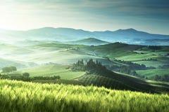 Tidig vårmorgon i Tuscany, Italien Fotografering för Bildbyråer